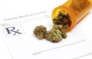 legalizacja-marihuny