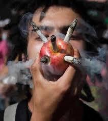 palenie marihuany jabłko