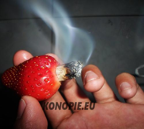 palenie marihuany z truskawki 1a
