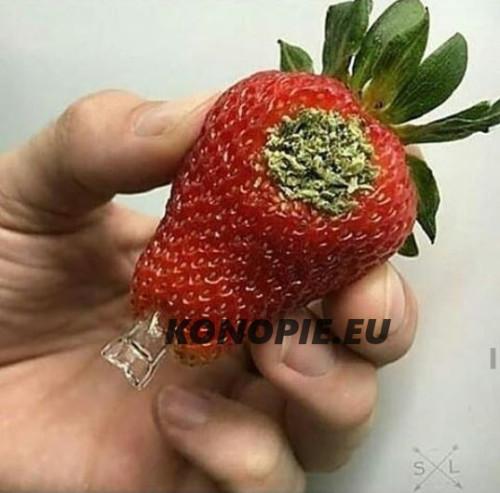 palenie marihuany z truskawki 2